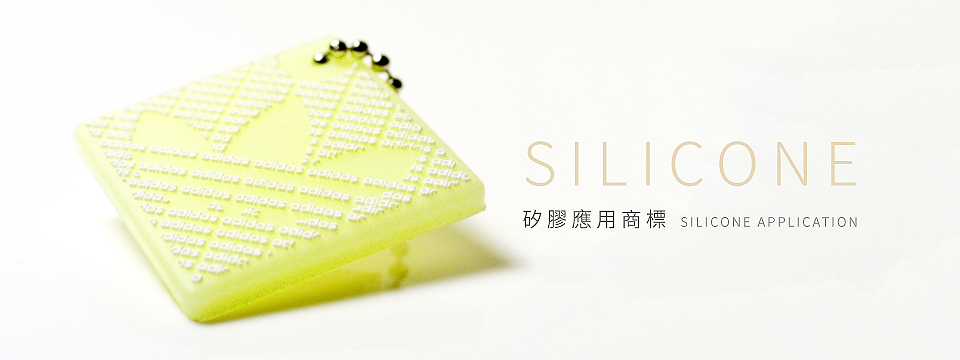 Silicone-Application4